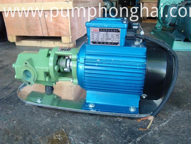 Gear Oil Pumps Show