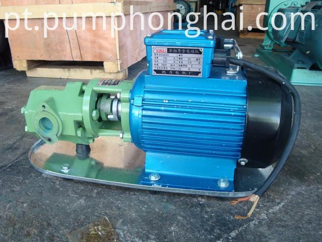WCB small gear oil pump portable electric fuel pump