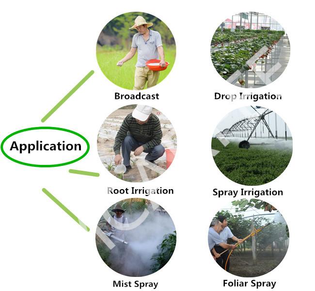High Nitrogen NPK 15-15-15 Green Fertilizer for Crop