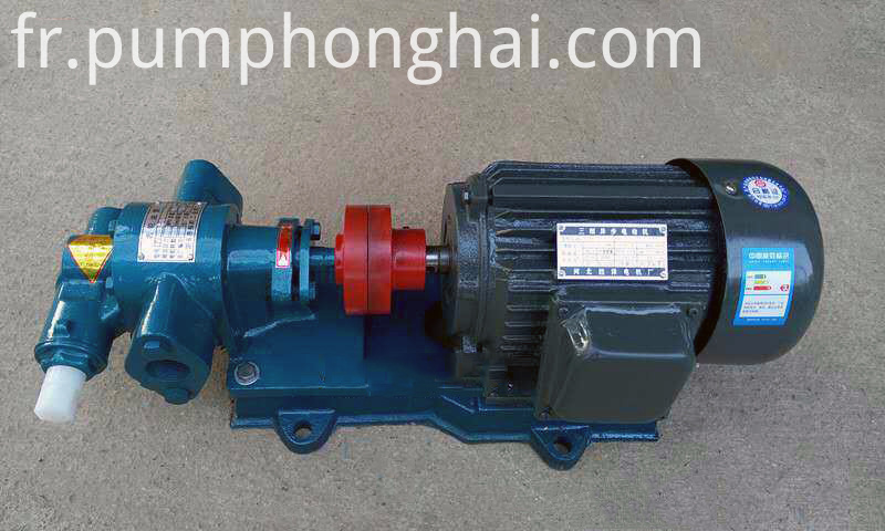Stainless Steel Palm Gear Oil Pump
