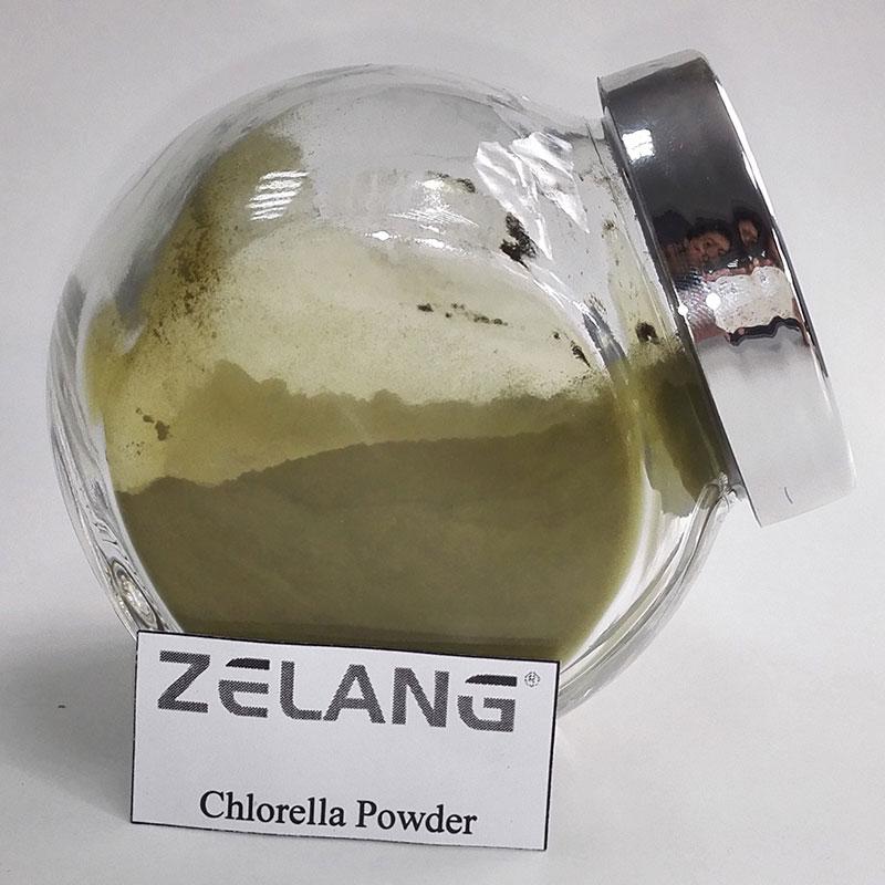 Organic Chlorella Supplement Where to Buy Chlorella
