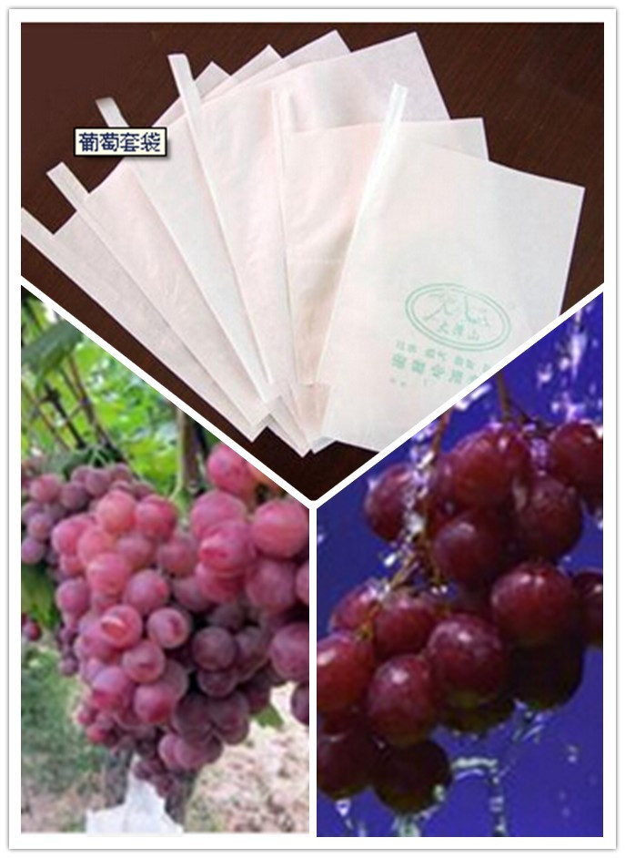 280X360mm White Glazed Apery Paper Micropoe Grape Growing Paper Bag Cheap Price Popular Used in Peru