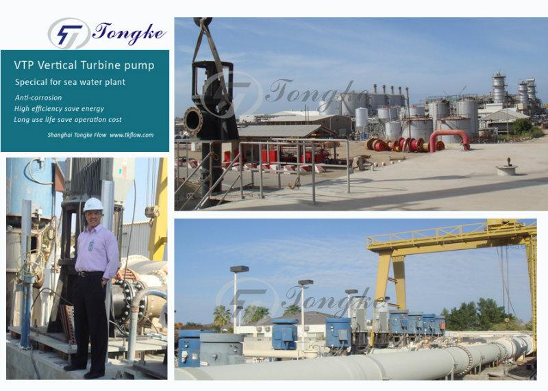 Vertical Turbine Pump for Salt Water