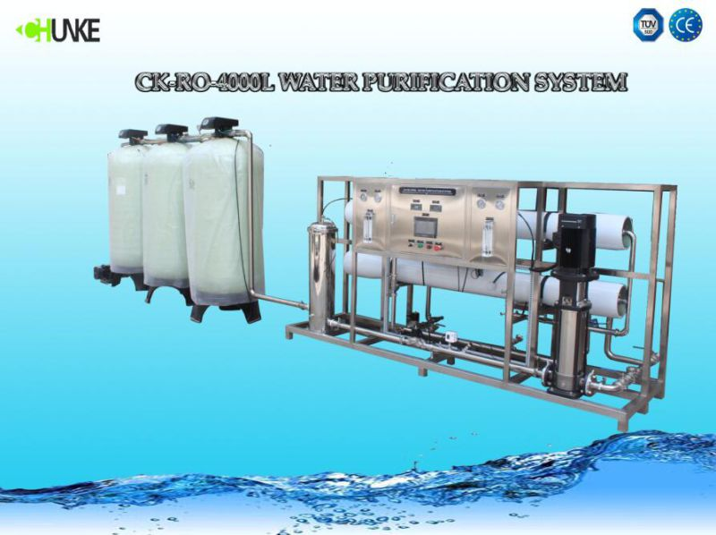 4000L/H for Salt Water by RO System Water Treatment Plant