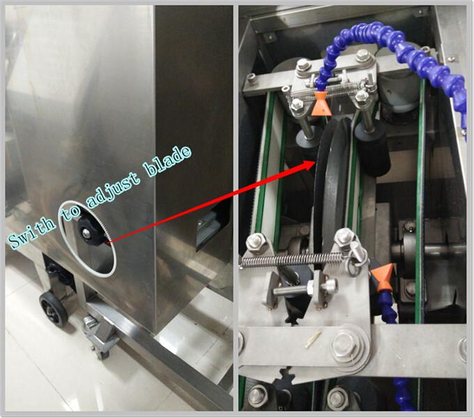 Large Type 304 Stainless Steel Fillet Cutting Machine, Fish Separator, Fish Processing Machine