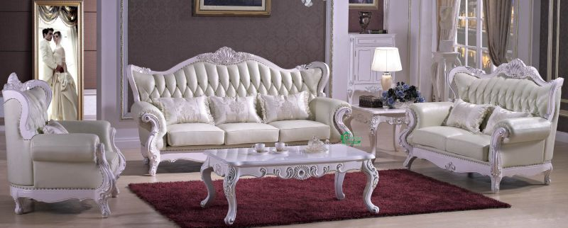 Real Leather Sofa for Living Room Furniture (D992)