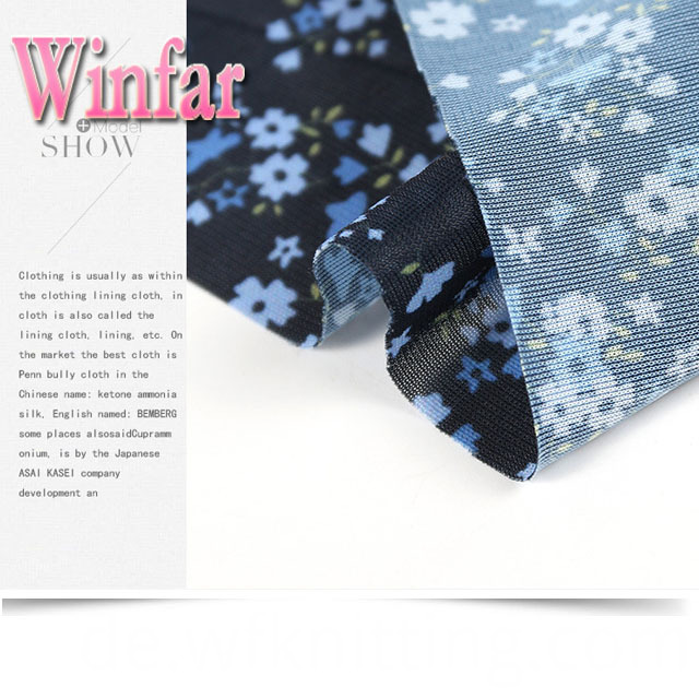Fashionable New Design Print Fabric