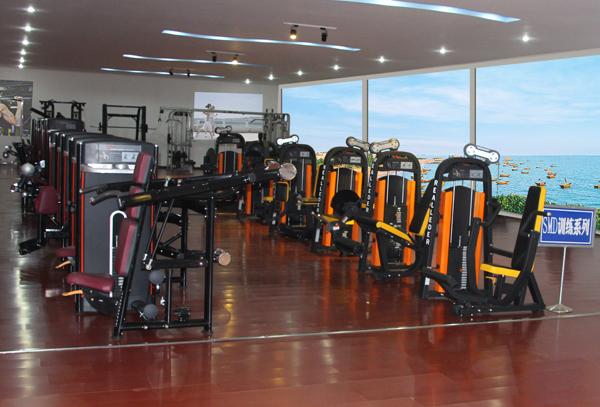 Bodybuilding Equipment Fitness for Abdominal Crunch (M7-1004)