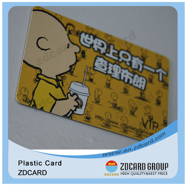 Plastic Clear Card/ Clear Matt Frosted Card/ ID Card