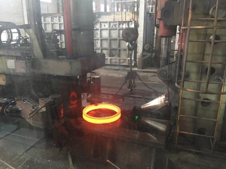 Ring Rolling Forged Rings