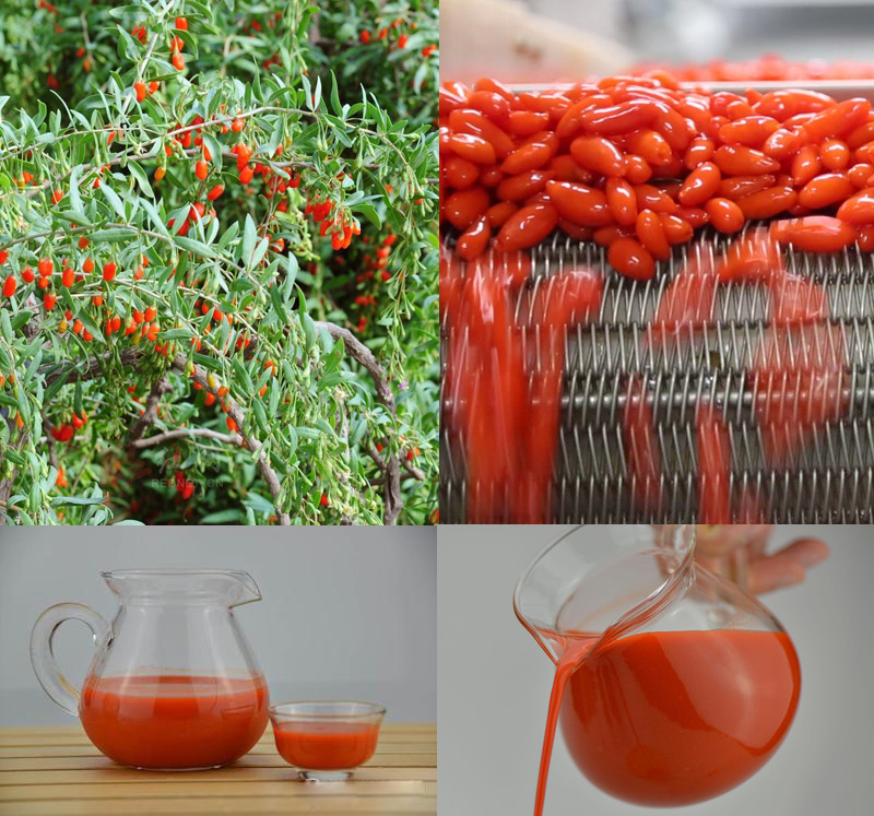 Natural Goji Raw Concentrated Juice