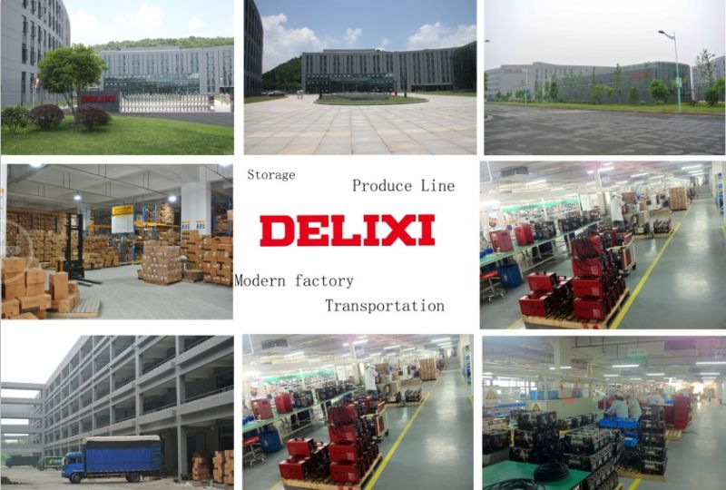Delixi Series Digital Pulse TIG Welding Machine (WSM-200ID)