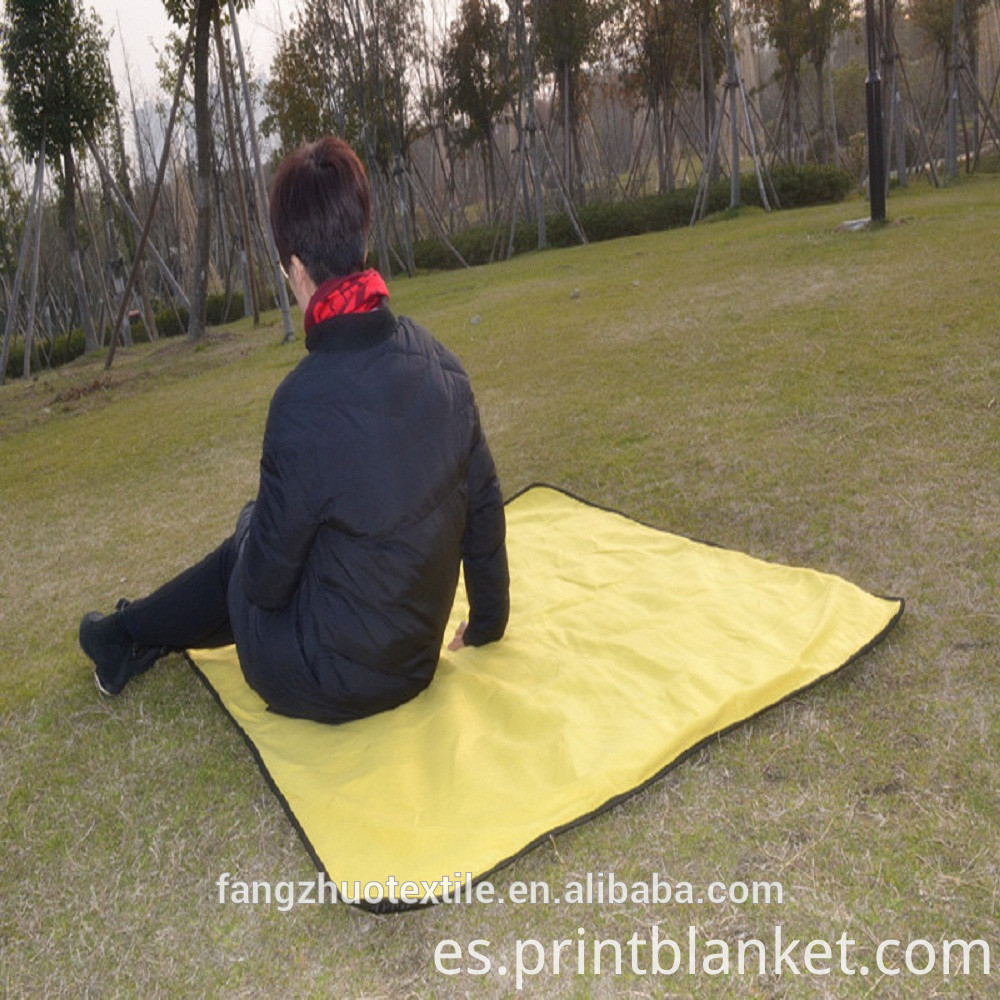 picnic fleece blanket