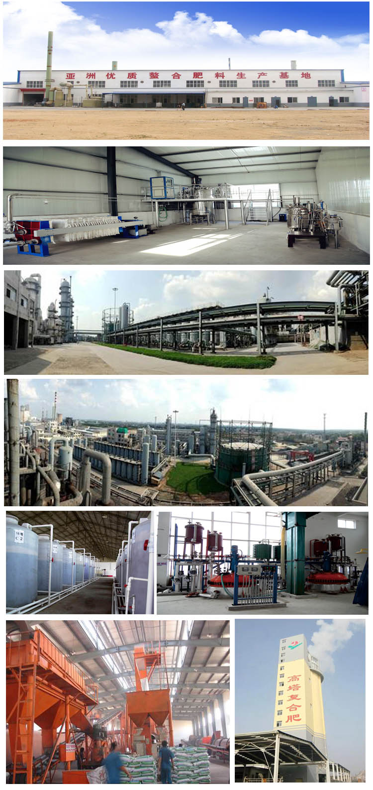 100% Water Soluble NPK 19-19-19 Fertilizer