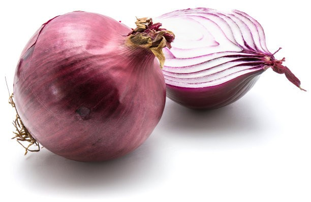 Quality fresh onion vegetables new crop for wholesale