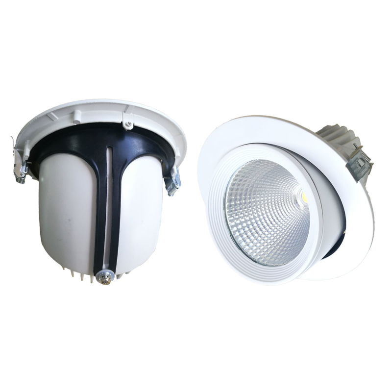 10W/15W/20W/30W/40W Adjustable COB LED Trunk Down Light