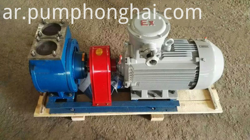 Electric Vane Pump