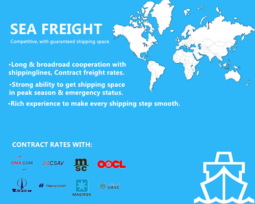 Reliable Ocean Shipping of FCL/LCL From China to Belgium