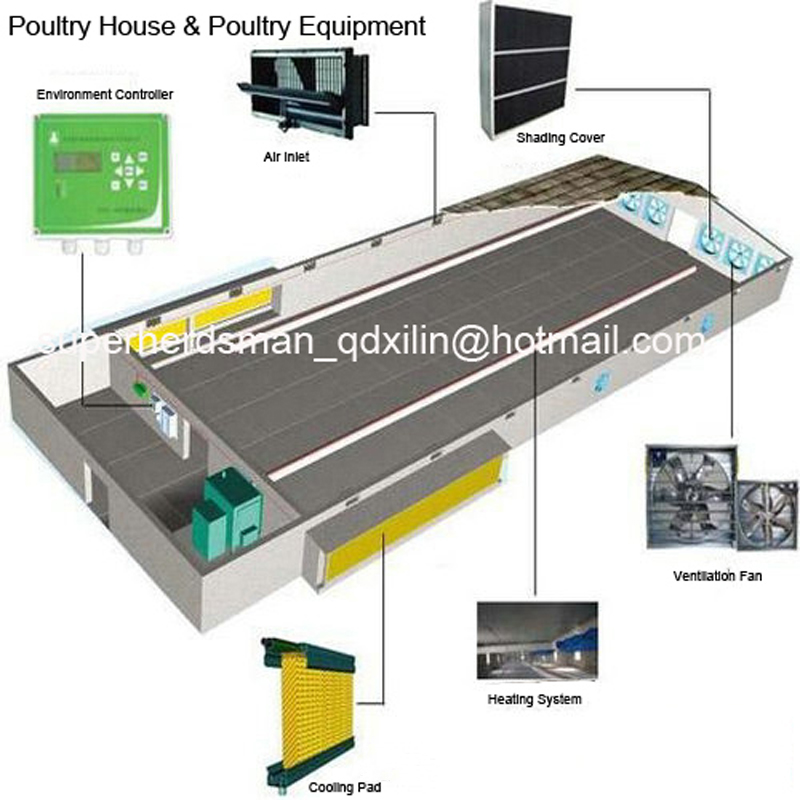 Full Set Automatic Poultry Farming Equipments