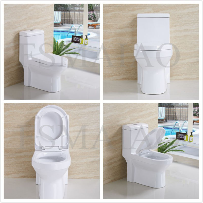 Ceramic Sanitary Wares Siphonic One Piece Toilet (8102)