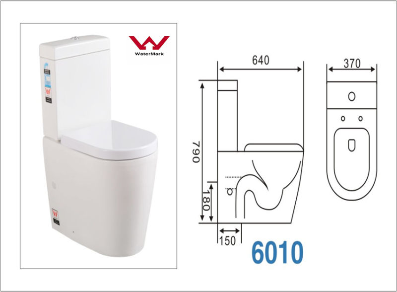 Hot Selling Foshan China Sanitary Ware Manufacturers Wc One Piece Toilet