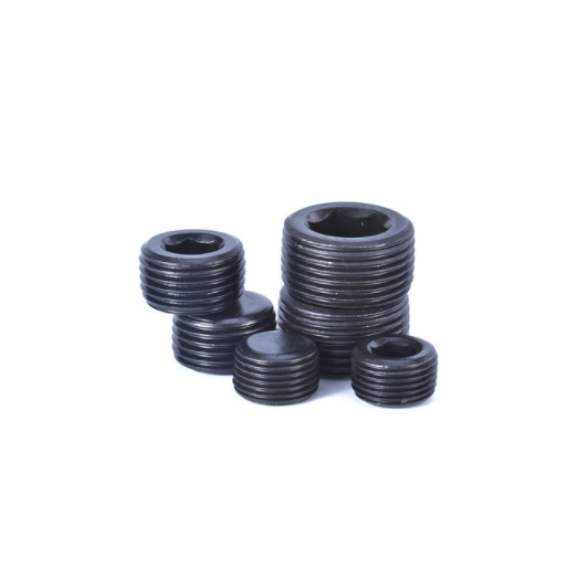 Hexagon Socket Pipe Plugs