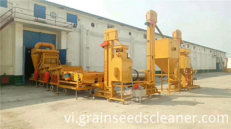 Wheat cleaning line