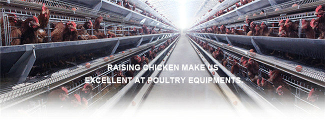 Top Quality Poultry Equipment a Type Battery Chicken Cage for Layers