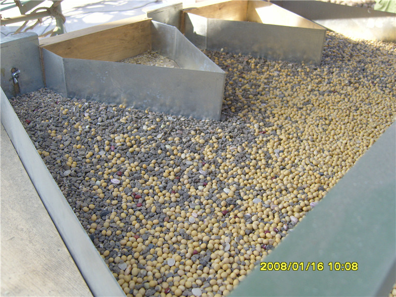 Grain Paddy Maize Seed Stone Destoner Machine Aire que sopla tipo