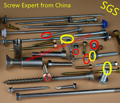 Self Tapping Screw Torx Bolts