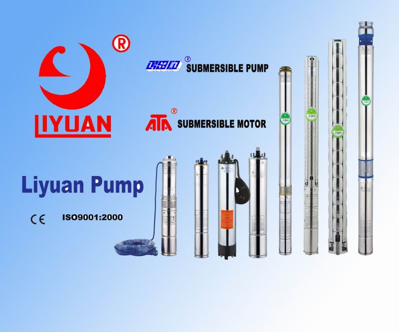 4 Inch and 6 Inch Submersible Pump and Submersible Motor