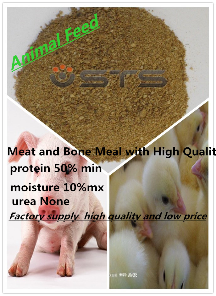Meat and Bone Meal for Sale (Feed Grade)
