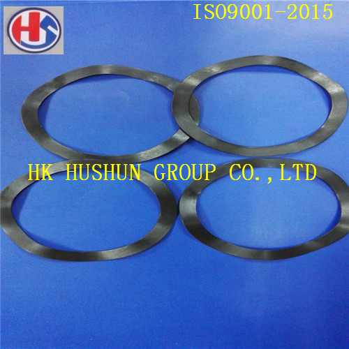 Stainless Steel Ball Spring Washer with Black Phosphating (HS-SW-6204)