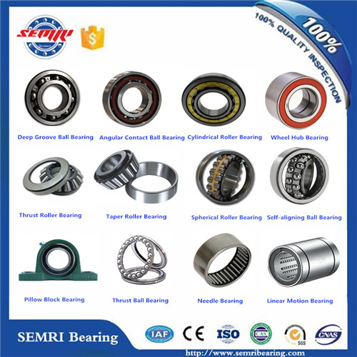 China Famours Semri Spherical Roller Bearing (22236) with High Precision