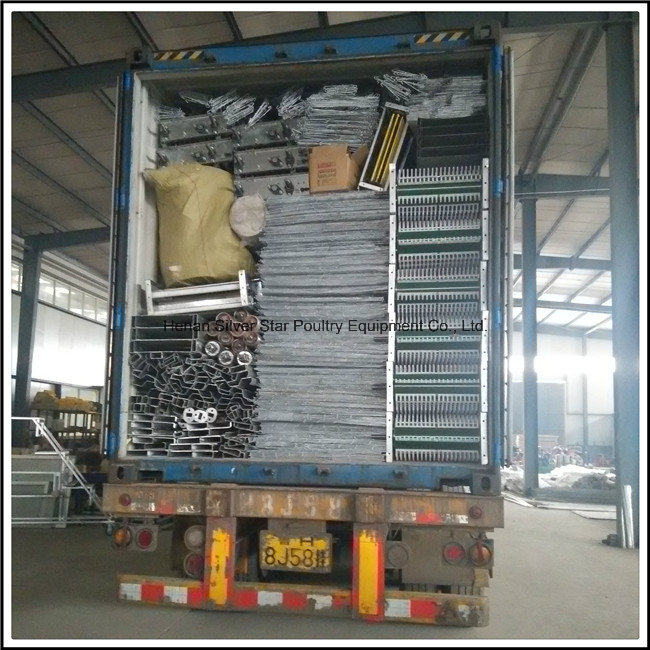 Poultry Feed Manufacturers H Type Layer Chicken Cage Farm Equipment