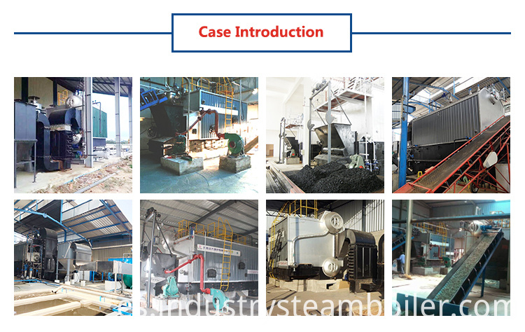 Cashew Nuts Shell Fired Boiler for Industry use