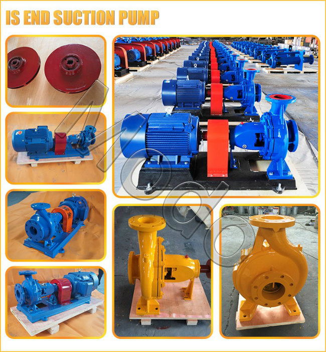 Ss316 Centrifugal Horizontal End Suction Water Pump