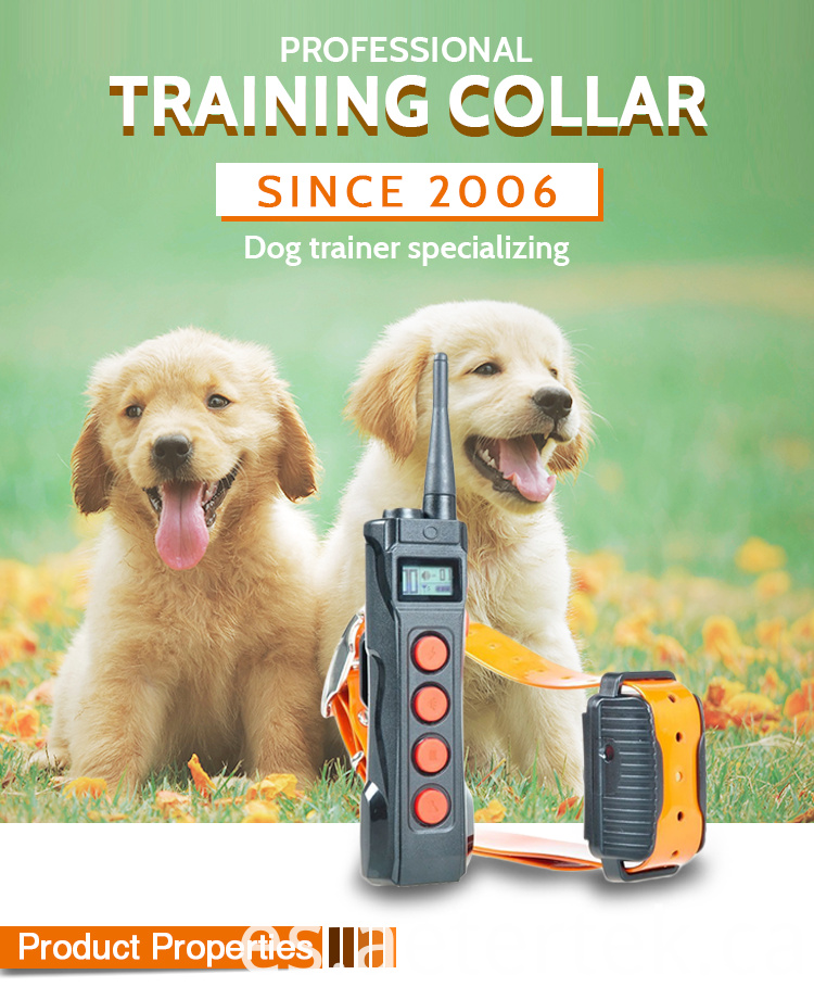 Dog Electronic Training Collar Waterproof