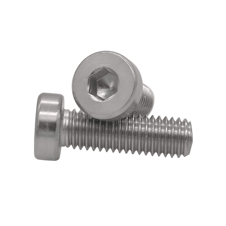 Stainless Steel Hexagon Socket Thin Head Screws
