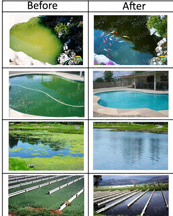 Ultrasonic Devices Algae Used for Small River Pond