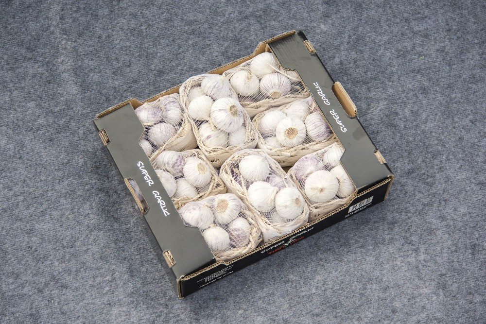 Top Quality Chinese Solo Garlic On Sale