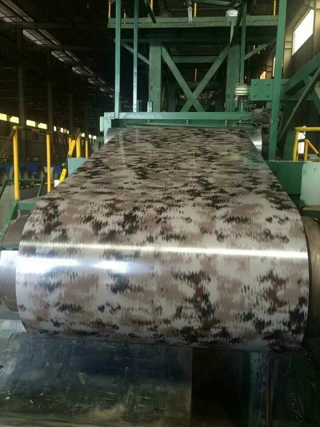 Galvanized /Prepainted Steel Coil for Building Material