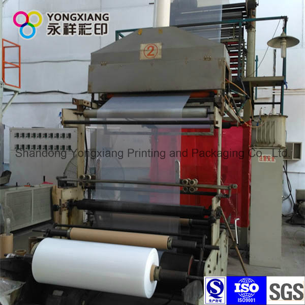 Laminated Three-Layer Co-Extruded Film