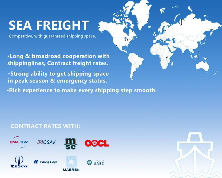 Porfessional Shipping Logistics Service From Shenzhen/Shanghai/Ningbo/Guangzhou to India