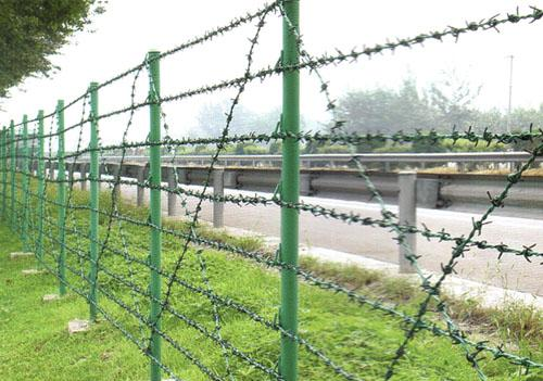 PVC Coated Galvanized Iron Barbed Wire for Fence