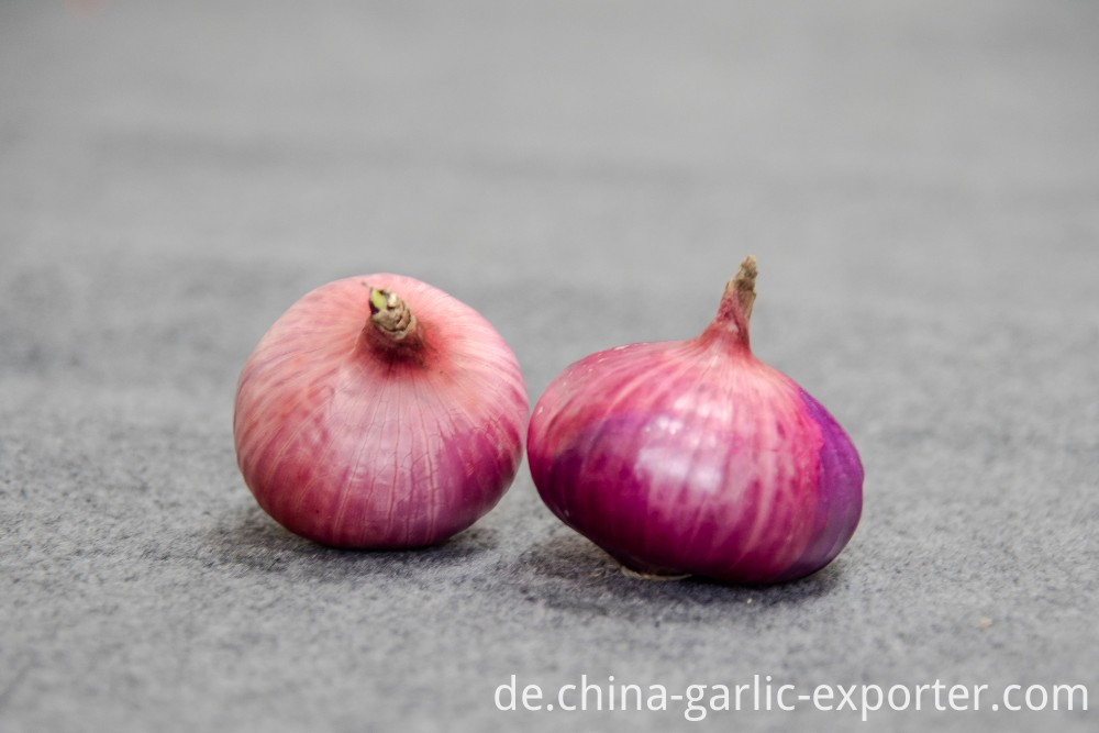 Vacuum packaging peeled garlic