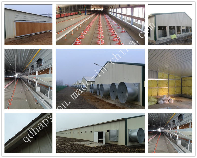 Prefabricated Broiler House with Raising Equipment