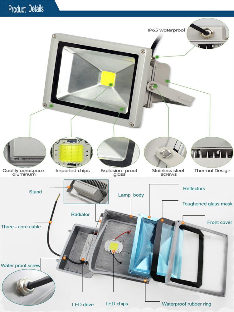 Guangzhou Factory 10W 30W 50W 100W IP66 COB LED Floodlight