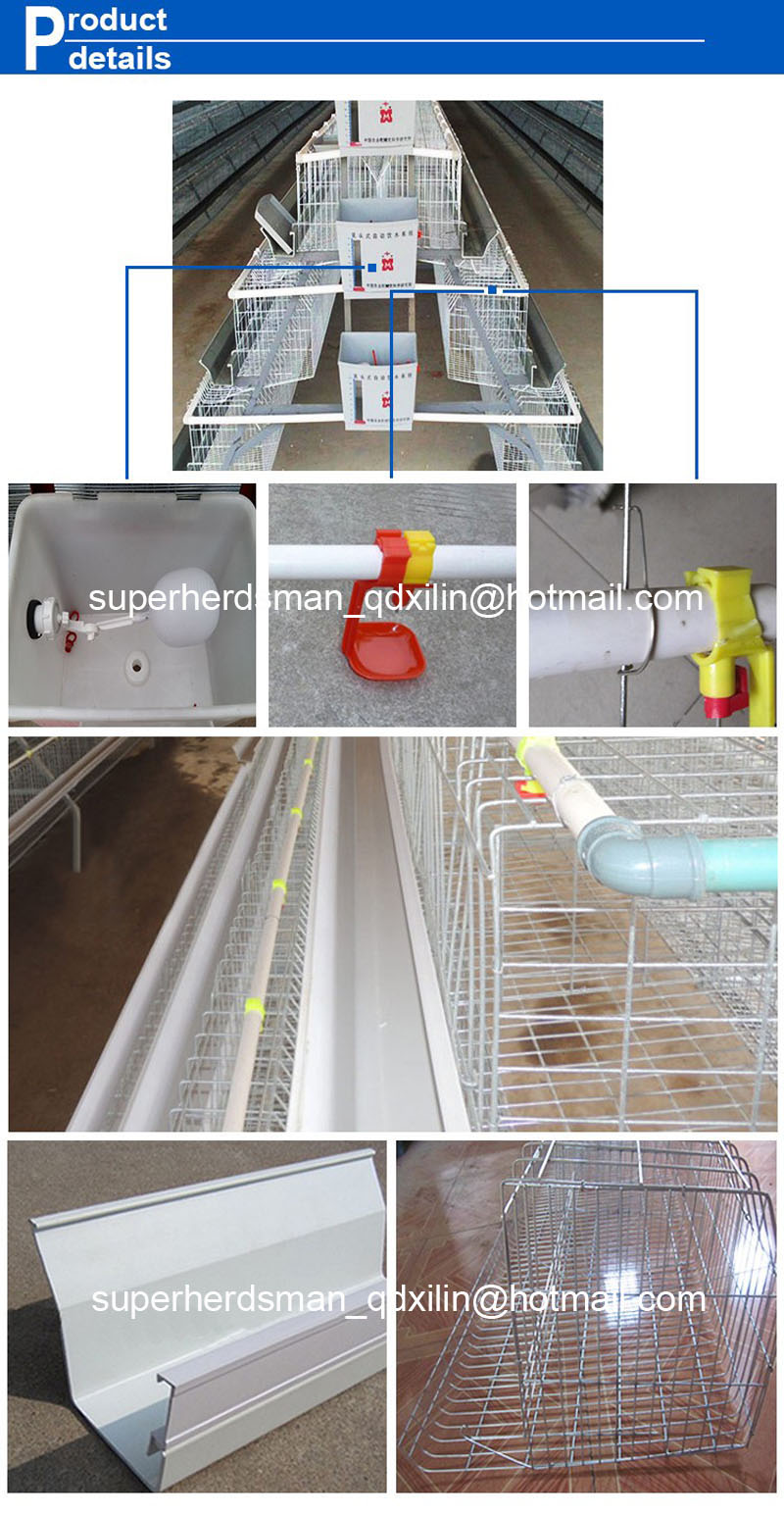 Battery Type Layer Cages with Automatic Equipments