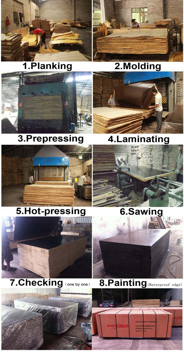 Poplar Black and Brown Film Faced Plywood Shuttering Marine Plywood